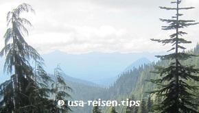 Aussicht Mount Rainier N.P.